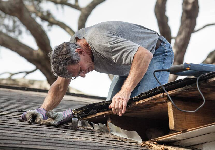 The Need for Timely Roof Repair by an Experienced Professional